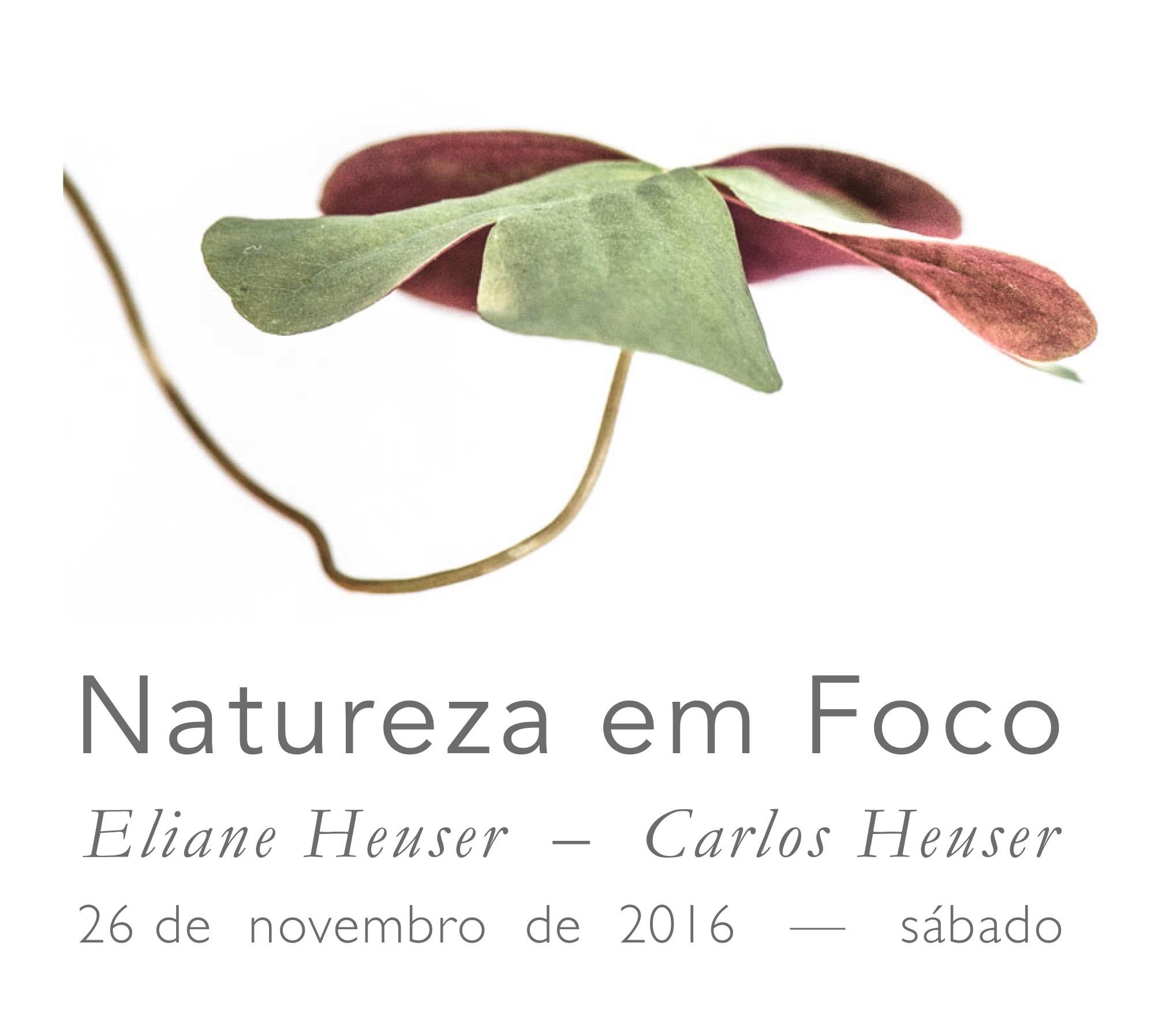 Natureza em Foco 2016